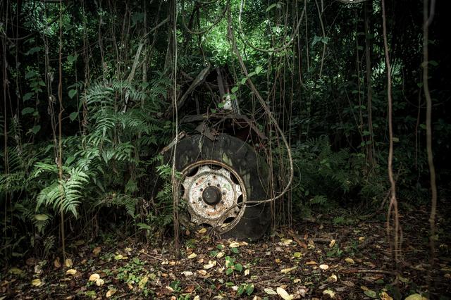 , 'The wheel of Dharma,' 2017, Espace D'art Contemporain 14N 61W