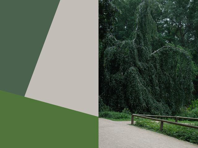 , 'Park & Recreations #4,' 2018, Winston Wächter Fine Art