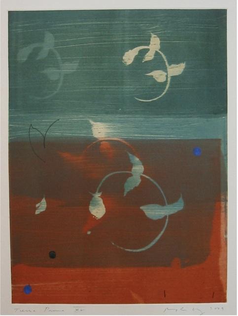 Robert Kelly, 'Terra Prima XV', 2003, Maune Contemporary