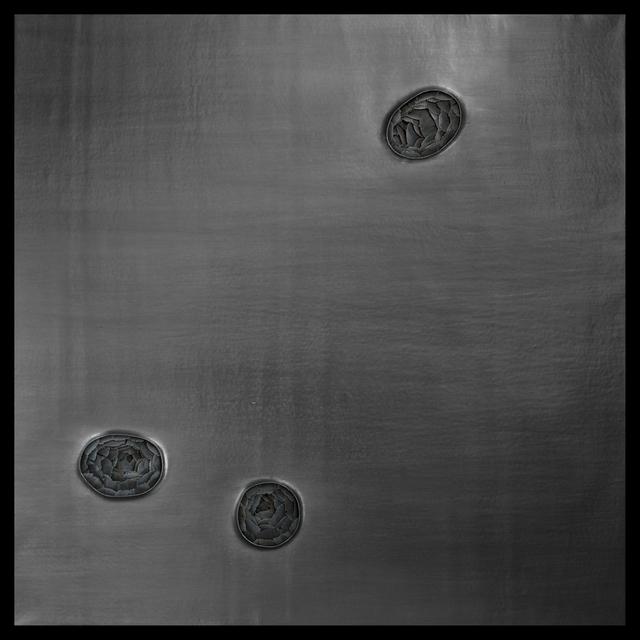 , 'Stigma (Pinion),' 2015, Galerie Huit