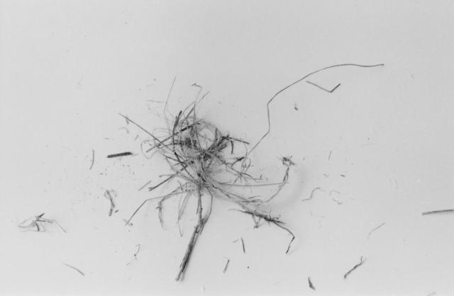 , 'The End (Nest Seven),' 1999, John Davis Gallery