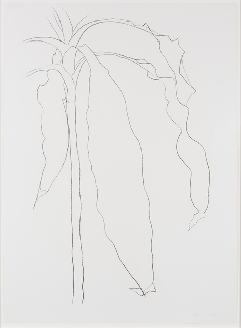 , 'Dracena I, from Series of Plant and Flower Lithographs,' 1983, Leslie Sacks Gallery
