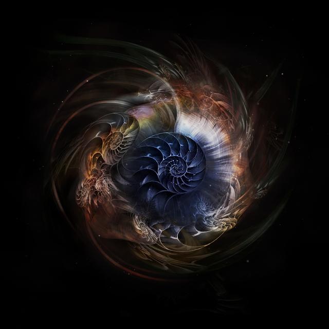 , 'Nautilus Universe 3,' 2018, ARTE GLOBALE