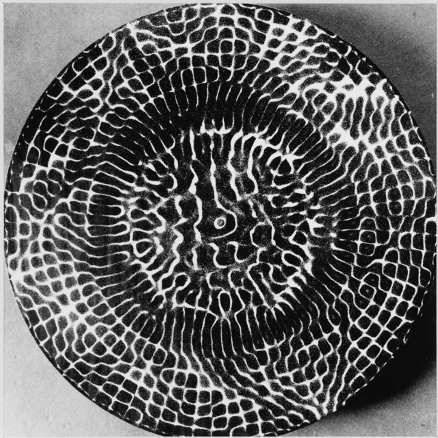 , 'Cymatics, Patterns of a world permeated by rythm,' 1963, SCHEUBLEIN + BAK