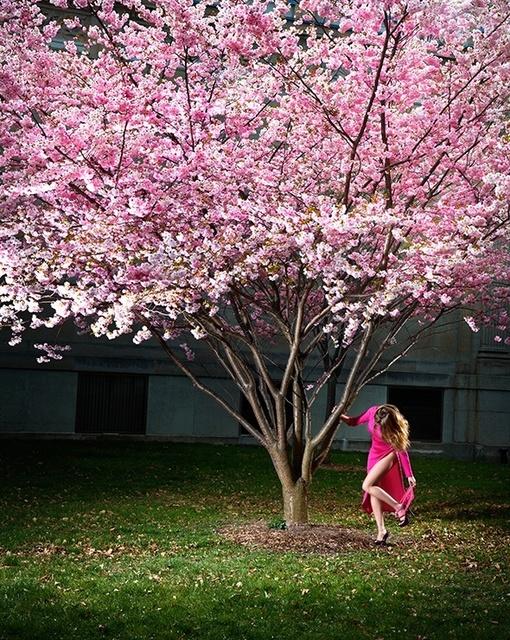 David Drebin, 'Pink Moment', 2012, Isabella Garrucho Fine Art