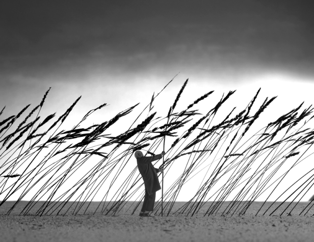 Gilbert Garcin, 'Sauver la nature - Saving nature', 2010, Photography, Gelatin silver print, Stephen Bulger Gallery