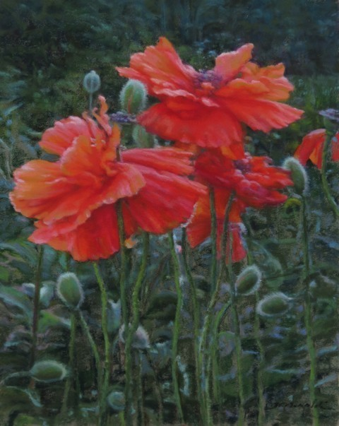 Julie C. Airoldi, 'Poppies', 2018, The Guild of Boston Artists