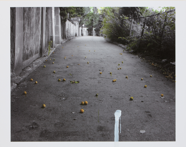 Honggoo Kang, 'The House - Apricot', 2010, ONE AND J. Gallery
