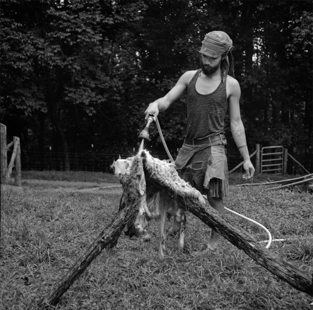 , 'Untitled, Paw Paw, Madison County, NC,' 2012-2014, Tracey Morgan Gallery