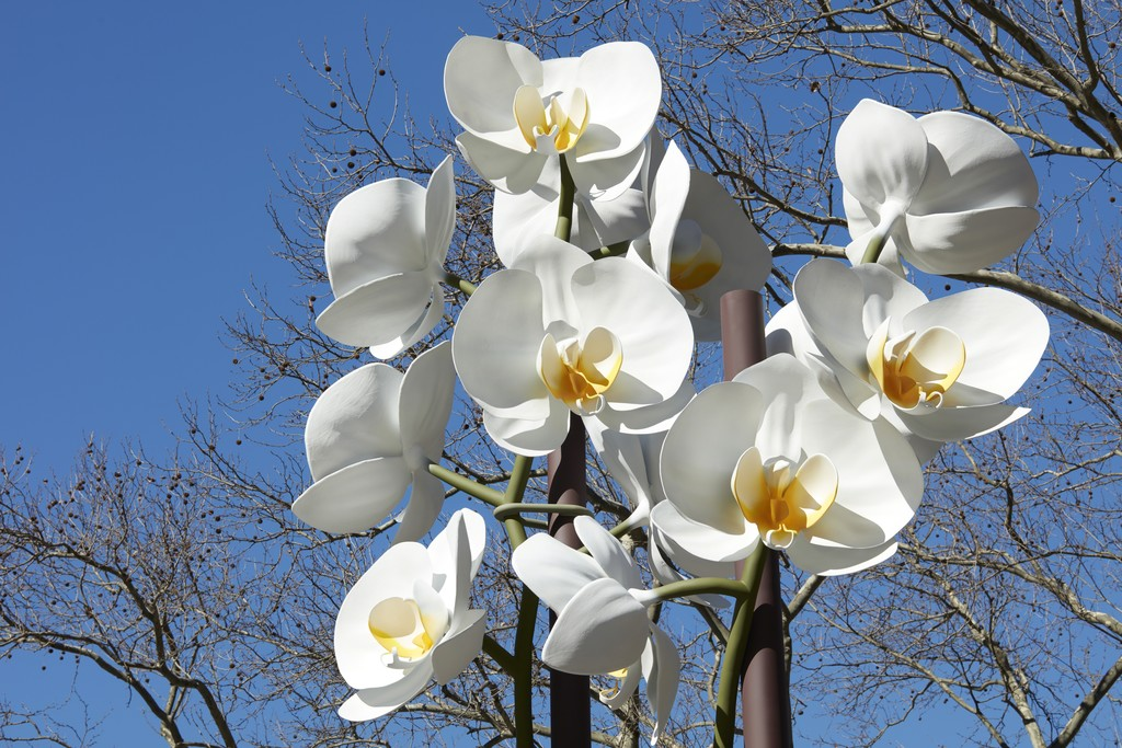 "Installation view of ""Isa Genzken: Two Orchids"" at Doris C. Freedman Plaza, Central Park, New York (2016)"