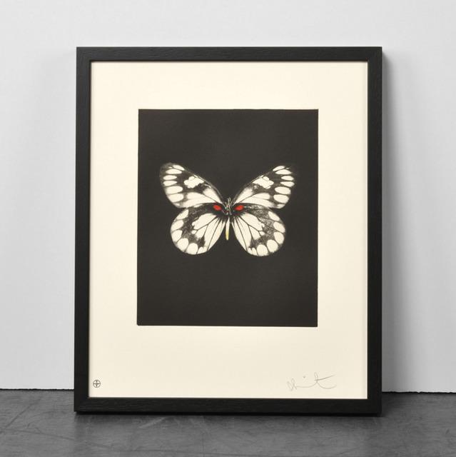 Damien Hirst, 'Damien Hirst, Regeneration', 2009, Oliver Cole Gallery
