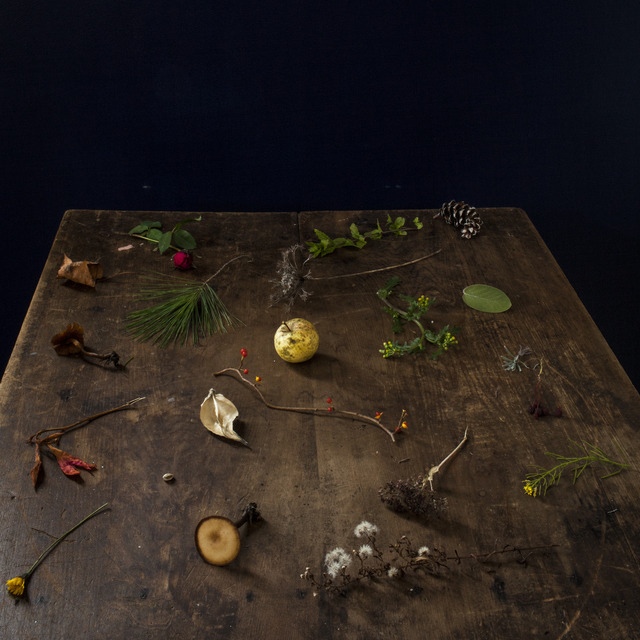 , 'Fall Table,' 2013, photo-eye Gallery