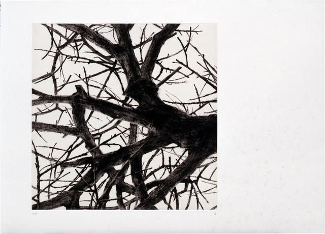 Rieko Hidaka, 'From the Space of Trees - a', 2001, Tomio Koyama Gallery