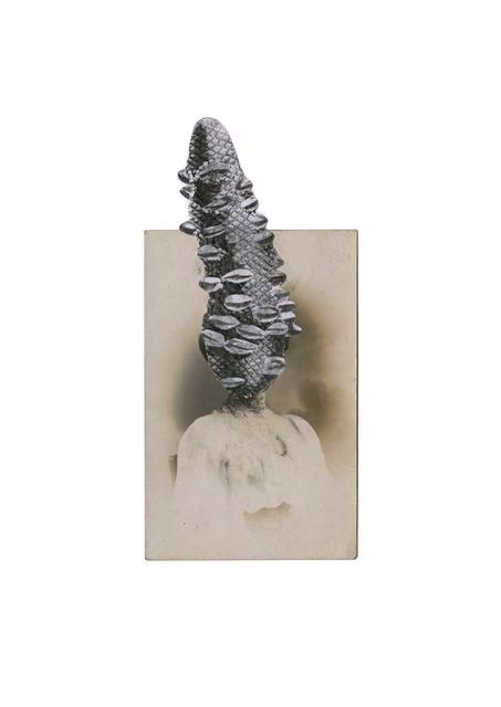 , 'Banksia,' 2014, Iniva