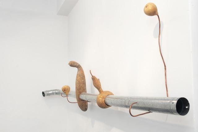 Sol Pipkin, 'Mundo sonoro en el interior de un zapallo,' 2014, Big Sur Galería
