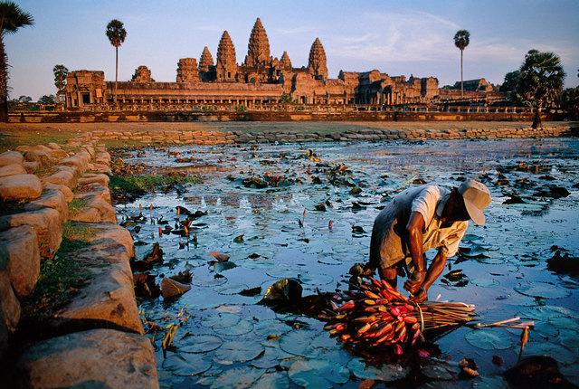 Steve McCurry, 'Lotus Gatherer, Cambodia,' 1997, Sundaram Tagore Gallery