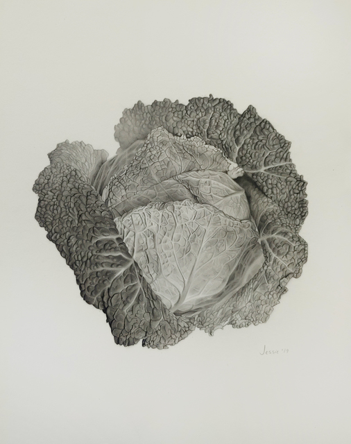 , 'Cabbage,' 2019, Gallery 78
