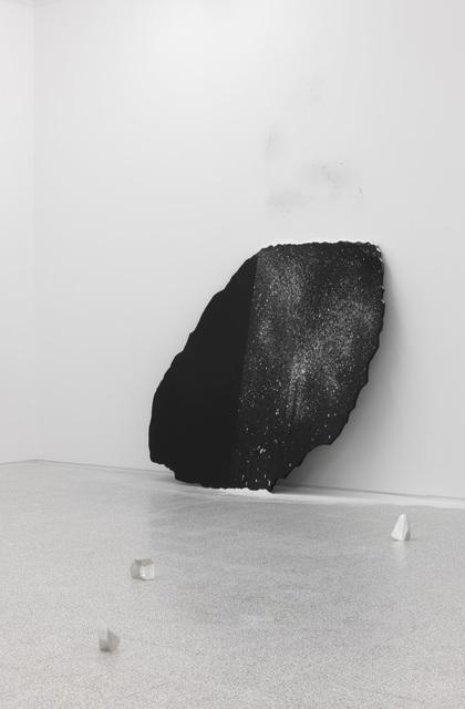 , 'Immagine seme,' 2011, Collezione Maramotti