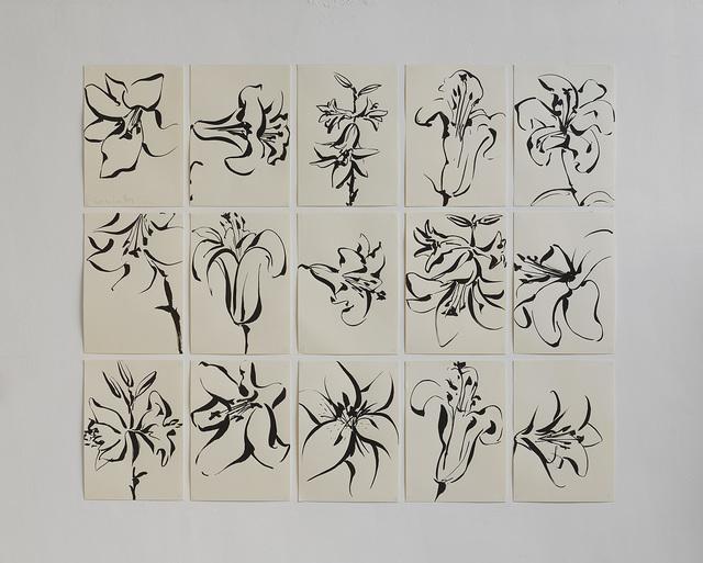 , 'Series of 15 drawings (Lilies),' 2016, Dvir Gallery