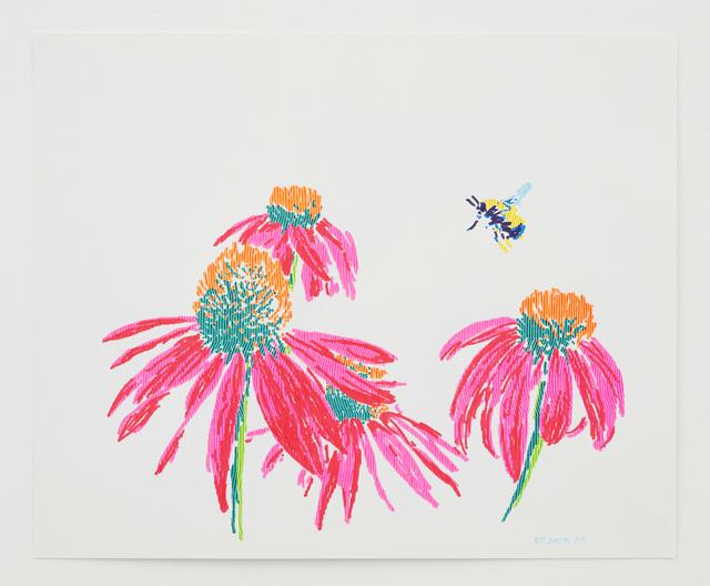 Butt Johnson, 'Untitled (Coneflowers)', 2018, Talley Dunn Gallery