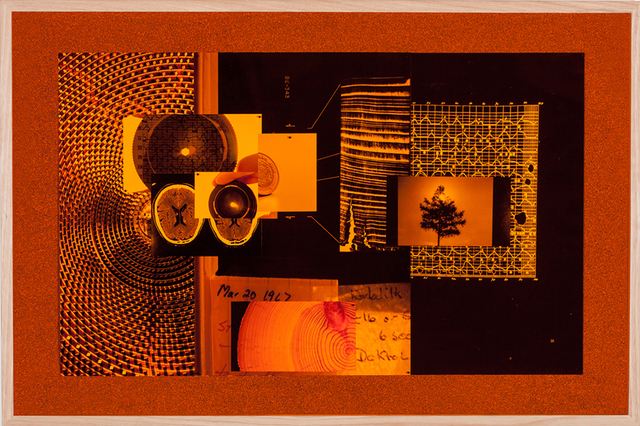 , 'Ancient lights (Brilliant Errors),' 2015, Sutton Gallery