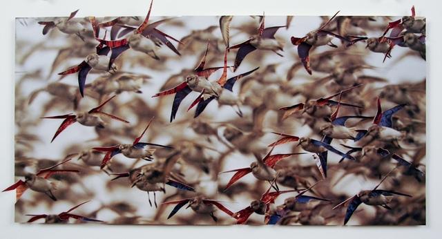 , 'Untitled (Birds),' 2013, Tracey Morgan Gallery