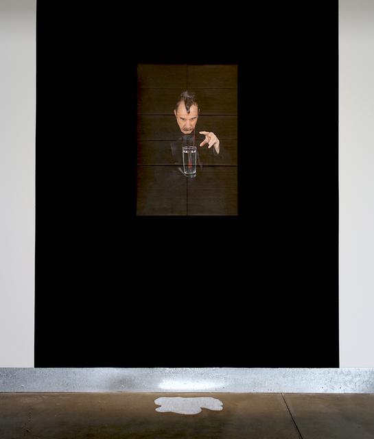 , 'The Hypnotist (installation view),' 2014, di Rosa