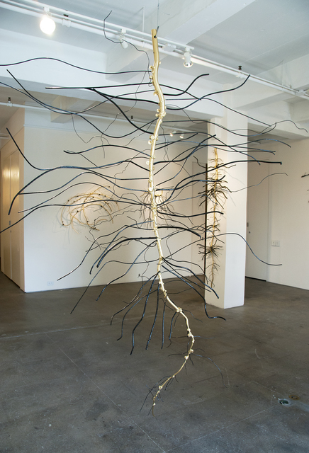 , 'Root of Soybean,' 2014, Galleria Ca' d'Oro