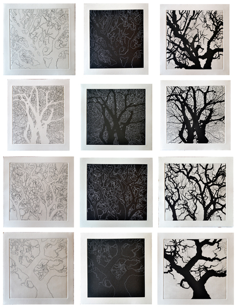 , 'Four Trees-Texas,' 2011, Ruiz-Healy Art