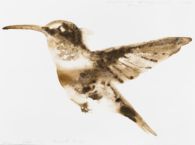 , 'Ruby-Throated Hummingbird (Archilochus colubris),' 2014, Parrish Art Museum