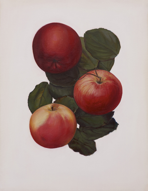 Jen Mazza, 'Untitled 2 (3 Apples)', 2014, Tibor de Nagy
