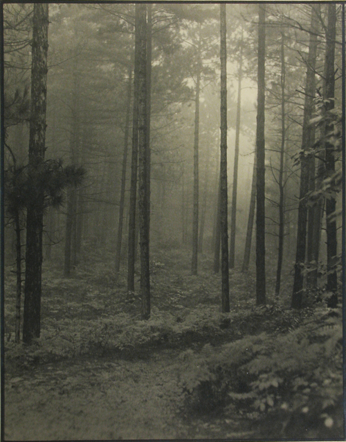 , 'Mystic Woods,' 1940, Stephen Bulger Gallery