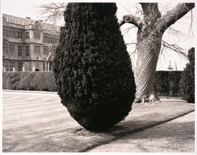 Fay Godwin, 'Montacute House, Somerset', 1982-printed later, San Francisco Museum of Modern Art (SFMOMA)