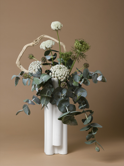 , 'The Handmaid, Queen Anne's Lace (Daucus sp.),' 2015-ongoing, Denny Dimin Gallery