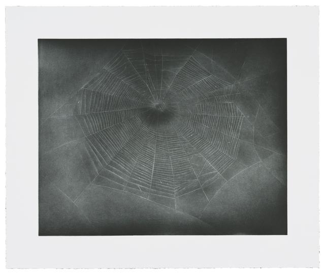 , 'Untitled (Web 3),' 2002, Gemini G.E.L.