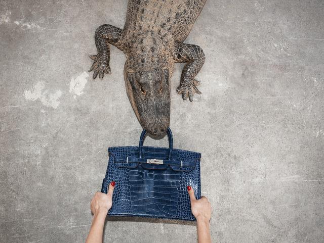 , 'Gator Birkin Hands,' , ArtLife Gallery