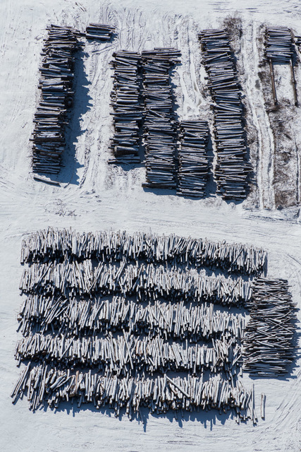 , 'Winter Log Piles Near Marion, NY,' 2017, Carrie Haddad Gallery