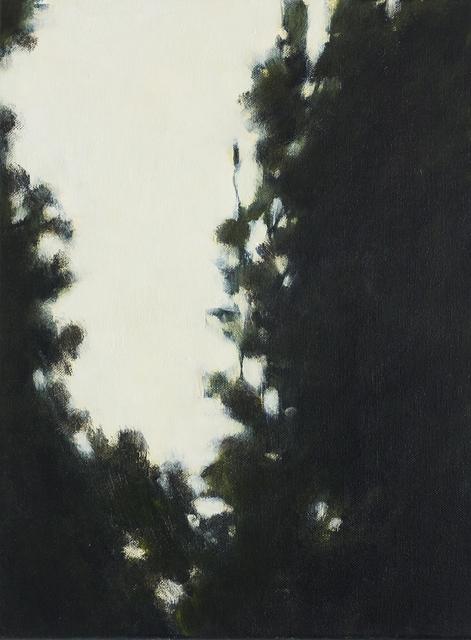 , 'Himmelsritt,' 2016, Galerie Zwart Huis