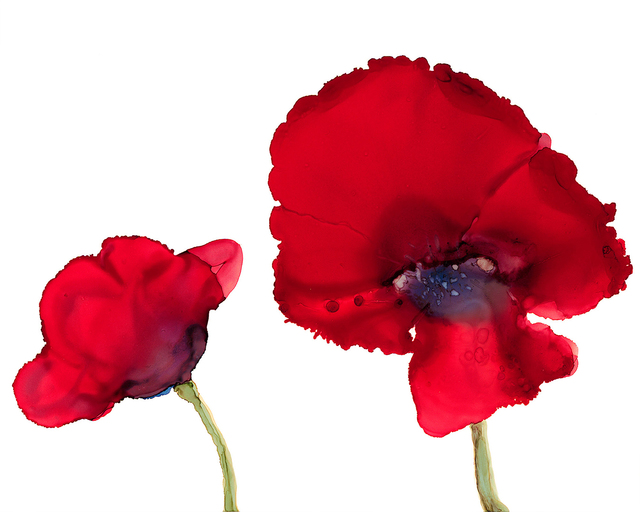 , 'Two Poppies,' , Chicago Art Source