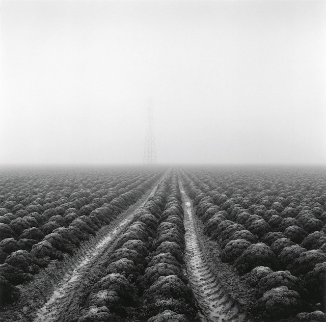 , 'Station Farm,' 2017, The Photographers' Gallery