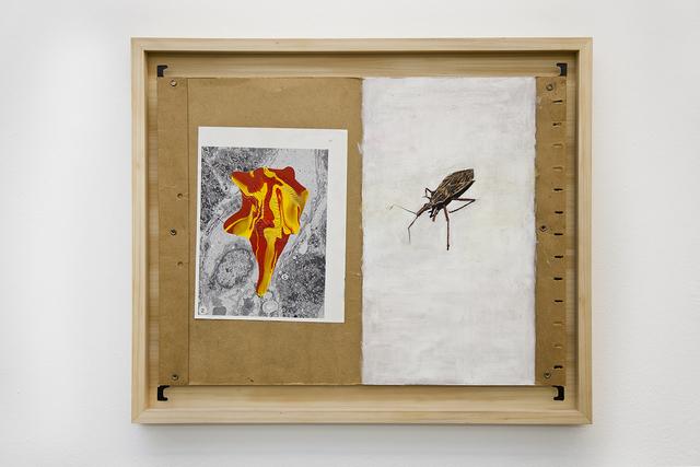 , 'File,' 2016, Athena Contemporânea