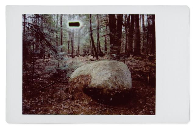 , 'Alien 12,' 2017, Robert Klein Gallery