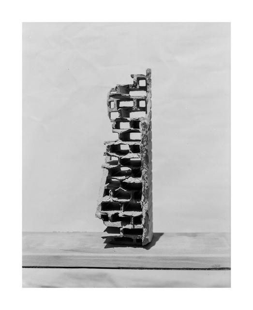, 'XI. (Human series),' 2014, Faur Zsofi Gallery