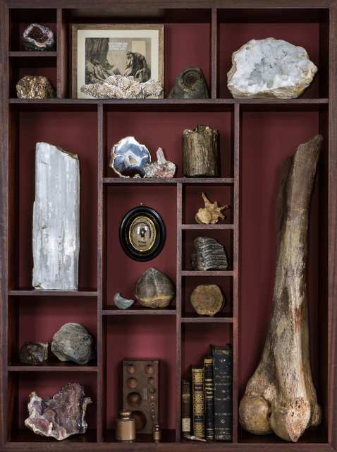 , 'Wonder Cabinet with 50,000 year old Wooly Mammoth Femur,' 2016, The Hanbury Collection