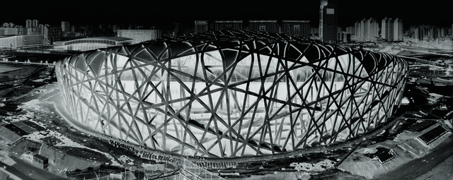 , 'Bird's Nest Stadium 15 Jan 2008,' 2008, Kunstmuseum Bern
