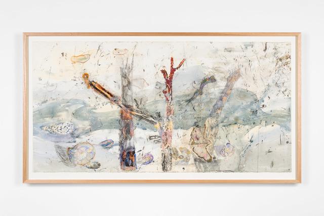 , 'The hidden territories of the Mangrove worm mollusc – Arafura Sea,' 2019, Roslyn Oxley9 Gallery