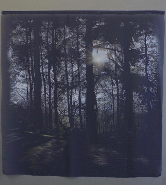 , 'Still,' 2019, Accesso Galleria