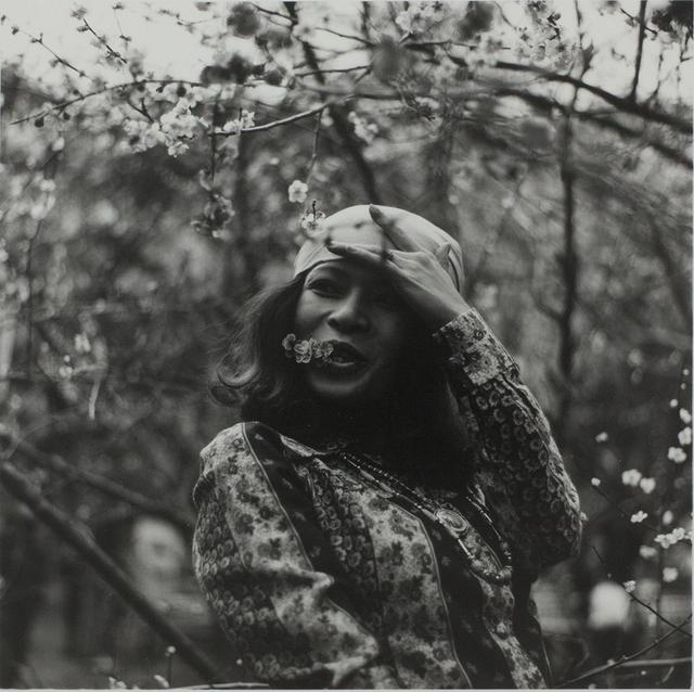 , 'Tokyo Oume,' 1976, MIYAKO YOSHINAGA