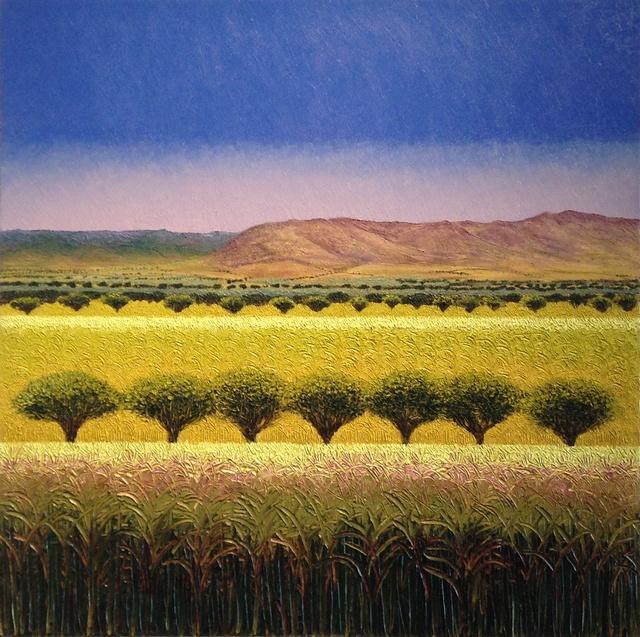 , 'Valle de Oaxaca,' 2015, Ruiz-Healy Art
