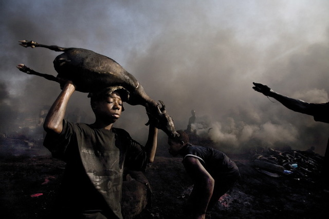, 'A boy carries the freshly killed carcass of a goat at the Trans Amadi Slaughter, which is the largest abattior in the Niger Delta, Nigeria,' 2006, Anastasia Photo